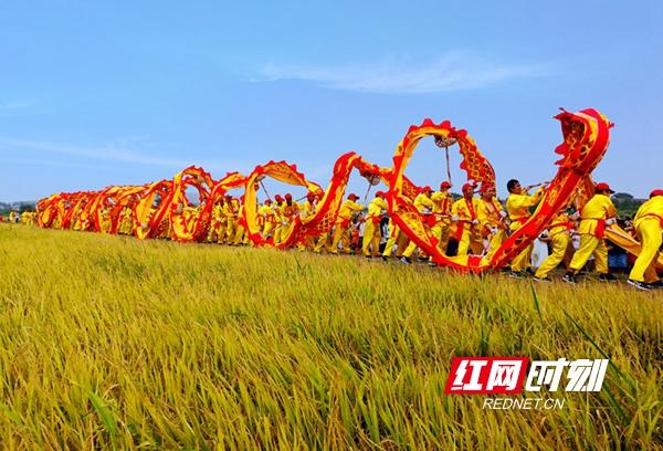 邵东全民欢庆首届农民丰收节