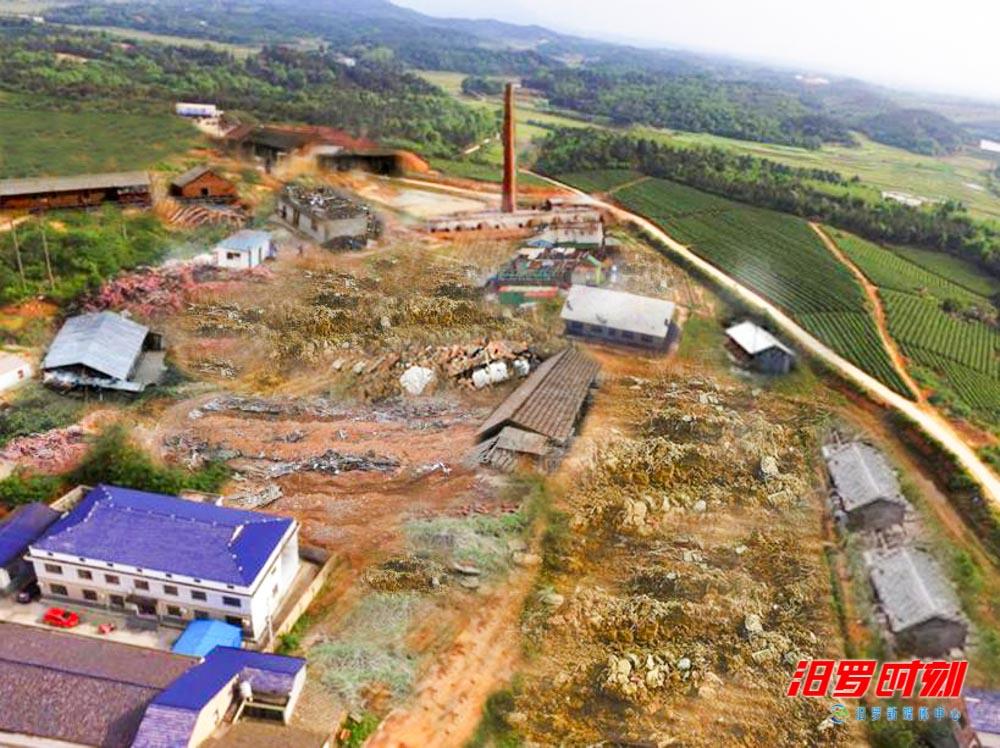 罗江镇:昔日废弃旧砖窑,如今复垦插秧苗