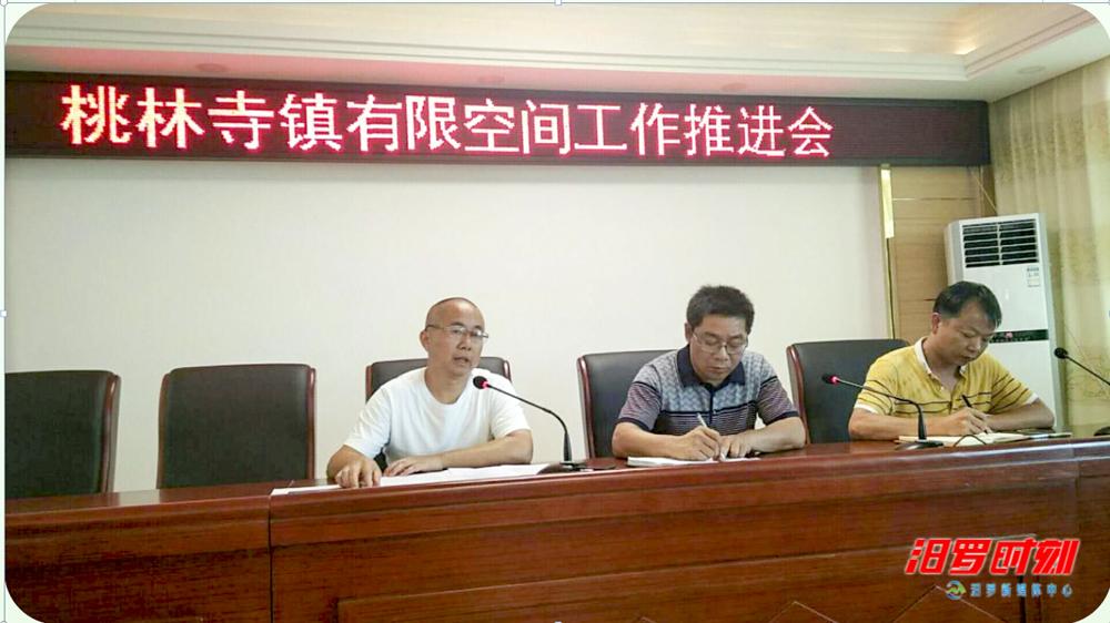 桃林寺镇召开有限空间作业安全生产培训会