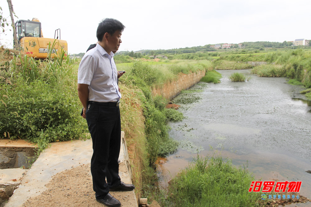 宋辉带队巡查桃林河