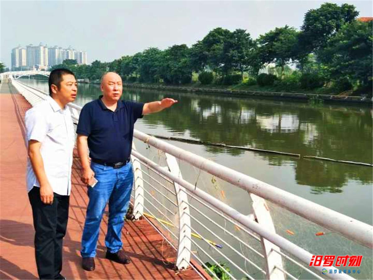 朱平波考察佛山新城滨河景观带等城建项目