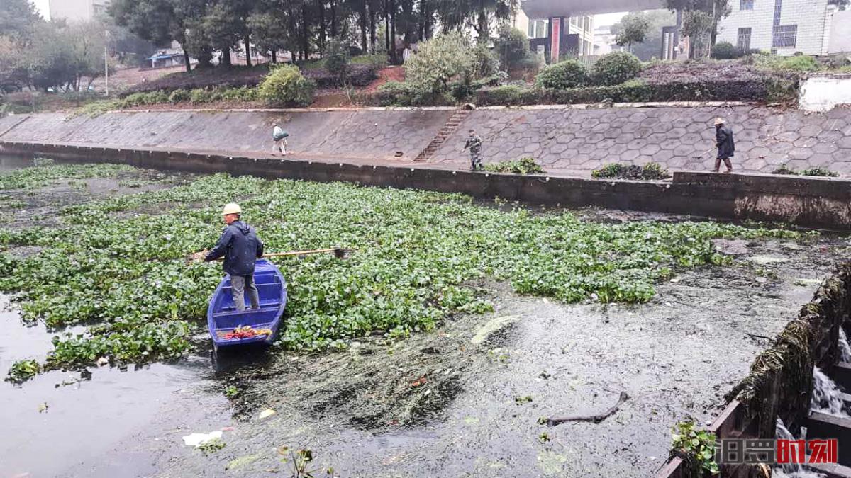 【三城同创】月清河道漂浮物数百吨,他们是友谊河的守护者